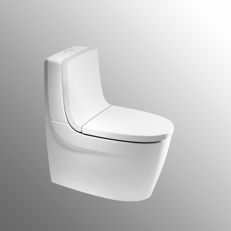 Wc sortie Verticale Bricomarche Luxe Stock Ides Dimages De Wc Design sortie Verticale