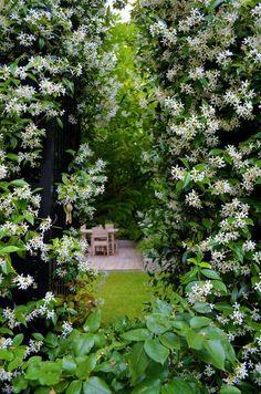 Xavier De Chirac Beau Stock Jardin Au Coeur De Paris Xavier De Chirac C´té Maison Projets