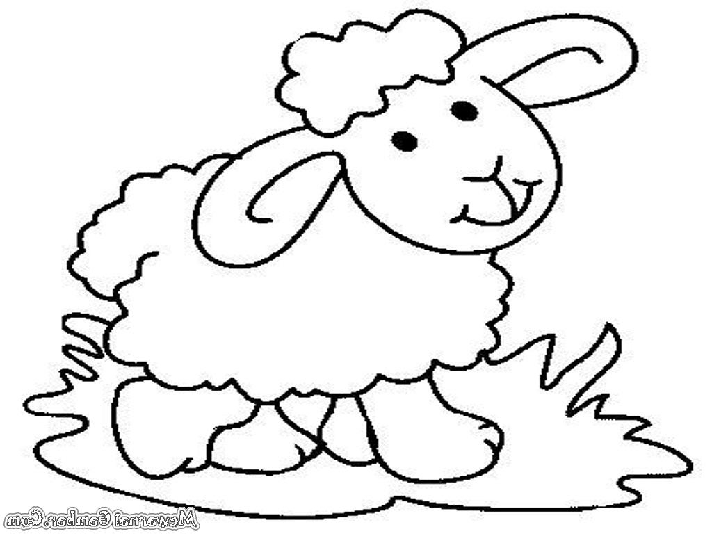 83+ Gambar Mewarnai Hewan Domba Hd Terbaru   Gambar Hewan with Gambar Domba Untuk Mewarnai