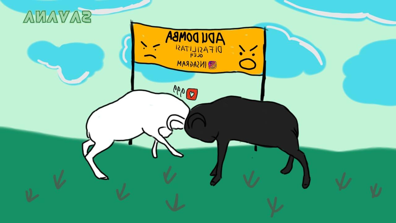 Adu Domba Di Media Sosial | Savana Post pertaining to Gambar Domba Diadu