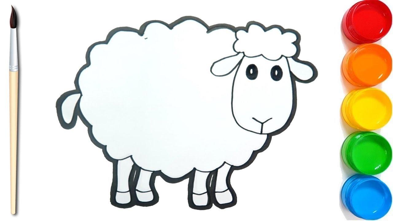 Cara Menggambar Dan Mewarnai Domba Dengan Mudah Coloring Pages regarding Gambar Domba Sketsa