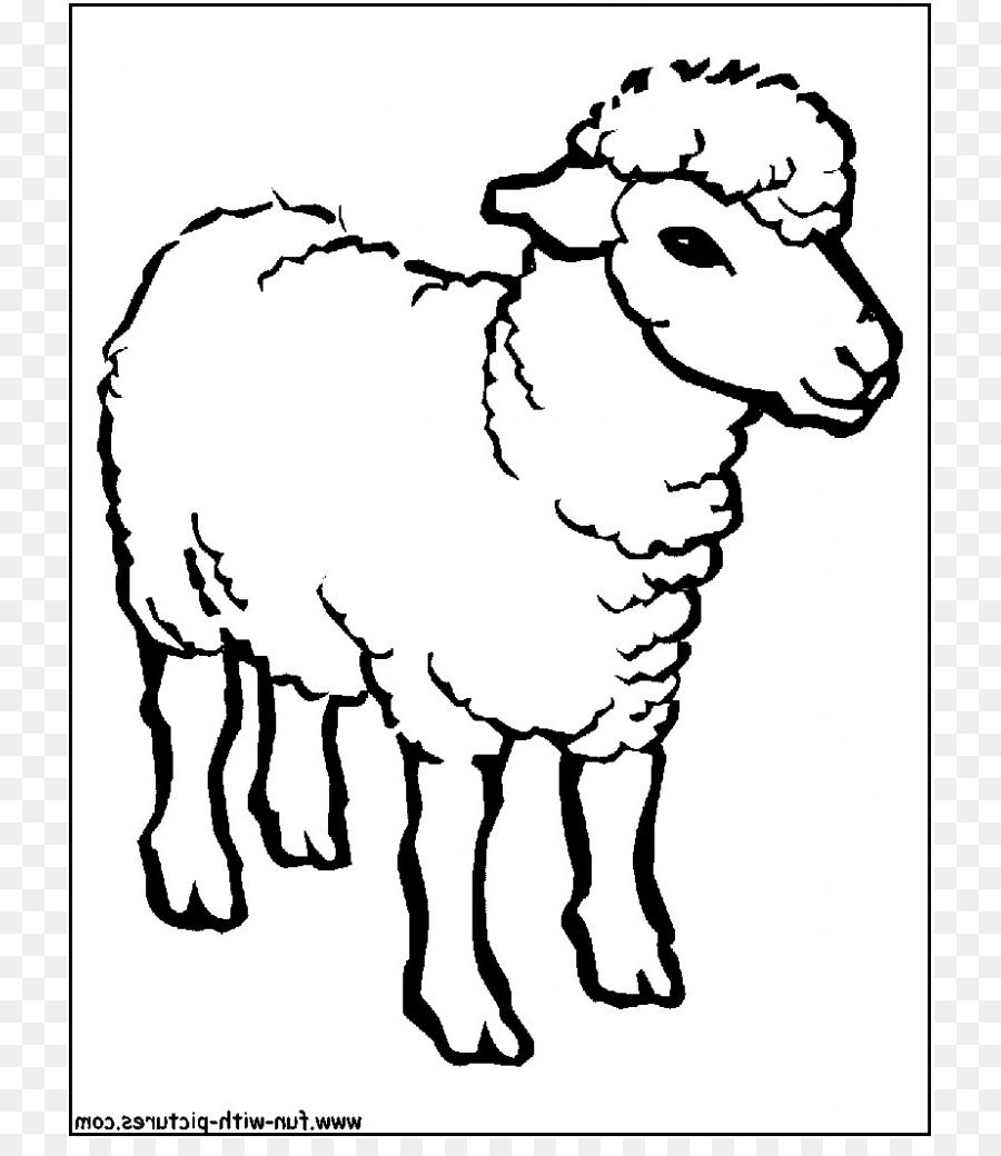 Domba, Buku Mewarnai, Putri Mewarnai Gambar Png pertaining to Gambar Domba Mewarnai