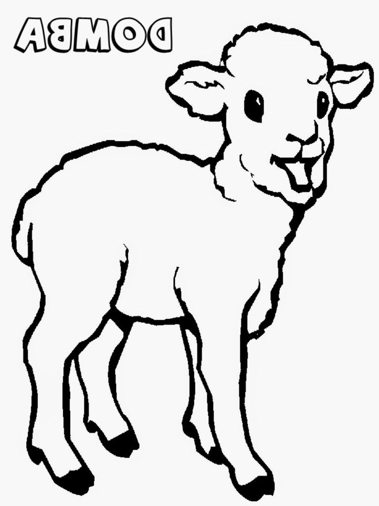 Gambar Mewarnai Anak Binatang Lucu | Anak Cemerlang regarding Gambar Domba Sketsa