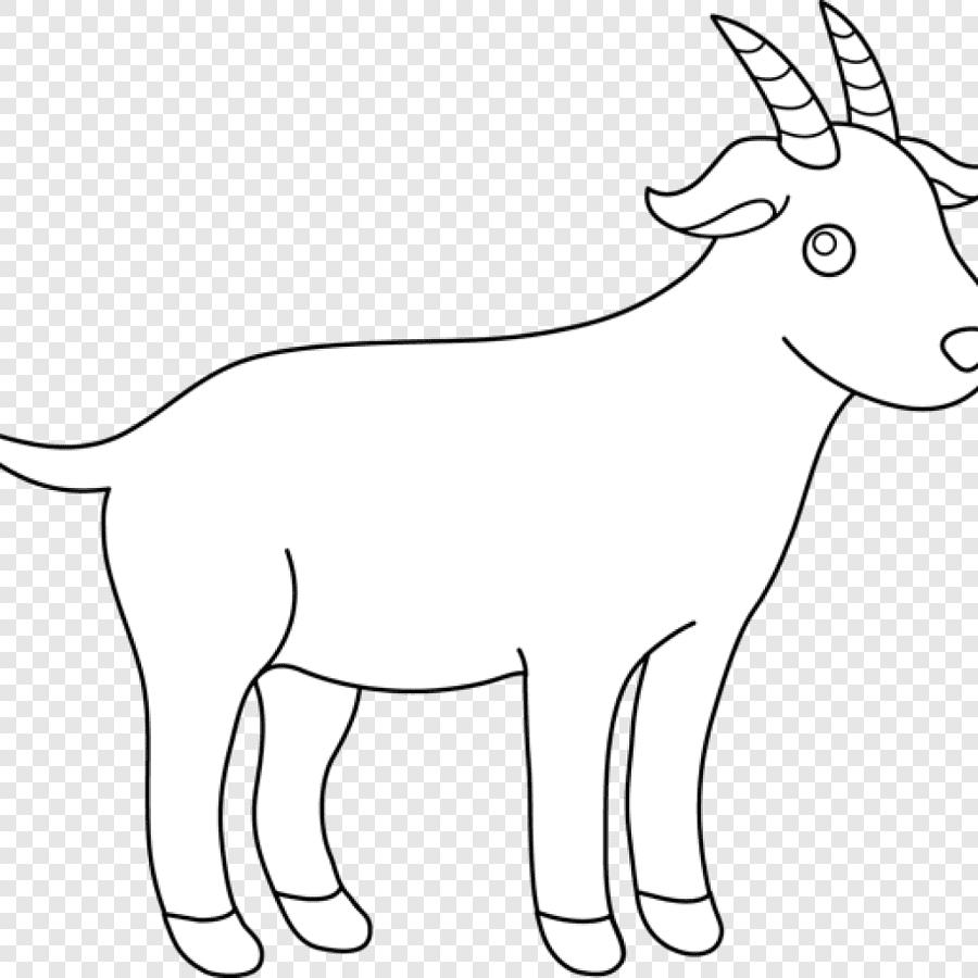 Kertas Kambing Benggala Hitam Domba Kambing Pigmi, Domba intended for Gambar Domba Sketsa